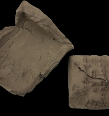 Clay Cuneiform tablet (03.024.4)